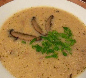 İstiridye mantarı çorbası nasıl yapılır? İstiridye mantarından çorba yapımı